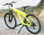 "E-Bike ""Ares"" fluo-green 250Watt"